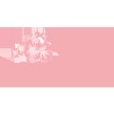 logo_Mimilù